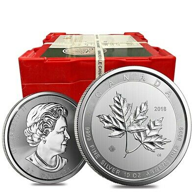 Box of 24 - 2019 10 oz Canadian Magnificent Silver Maple Leaf .9999 Fine $50