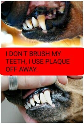 Get the PLAQUE OFF Dogs teeth - 200g Plain Packaging/Exact Same Results