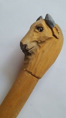 Attic Fresh Discovery Of This Wonderful Hand Carved Ram's Head Wooden Cane