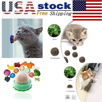 Kitten Catnip Sugar Cats Snacks Licking Candy Nutrition Healthy Energy Ball Toys