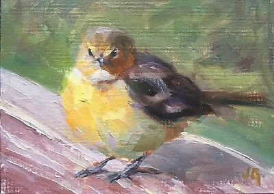 Original Bird Oil Painting Signed