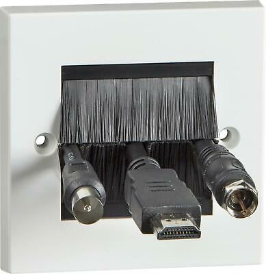 2 Gang Brushed Letterbox Style Face plate for Data - TV, network & power cables