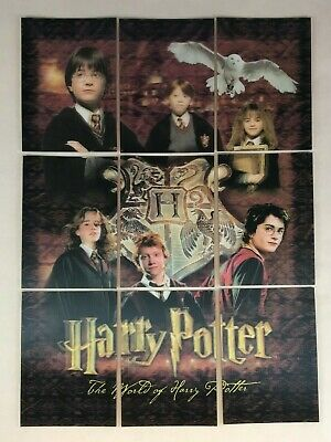 Harry Potter World Of Harry Potter 3D Series 1 Rare Chase Card R1