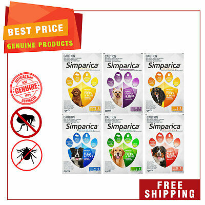 SIMPARICA Flea and Tick Control for All Sizes Dogs 6 Chews by Zoetis