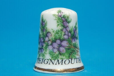Teignmouth Devon China Thimble B/107