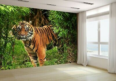 21908284 Wallpaper Tiger looking through trees in the Jungle wall mural photo