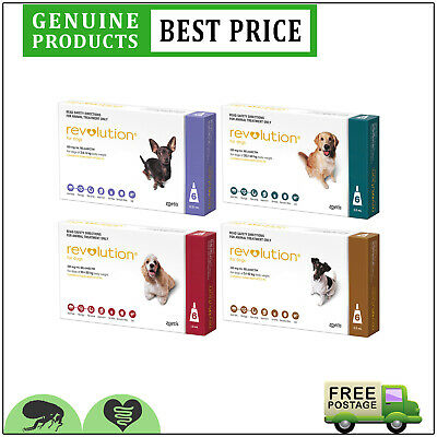 Revolution for Dogs 6 Doses All Sizes Flea Heartworm Control by Zoetis
