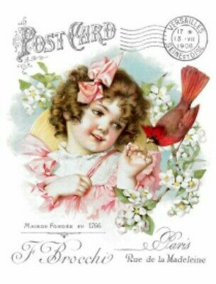 Vintage Image Victorian Girl Cardinal French Advertising Transfers Decals KID578