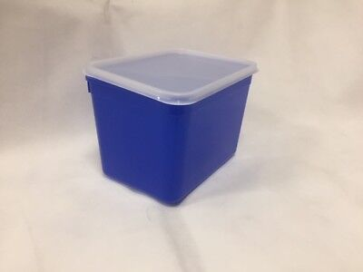 4 Litre Rectangular Ice Cream tubs / Blue Food storage containers with Lids