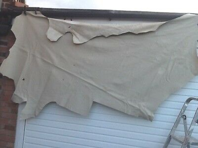 LEATHER ITALIAN HIDE Neutral colour