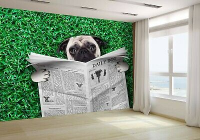 Pug dog as personal trainer photo Wallpaper wall mural 31536726