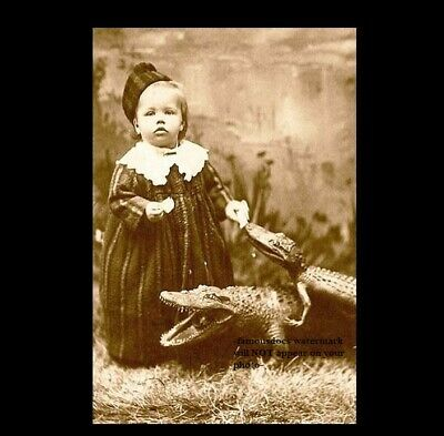 Vintage Alligator Baby Girl PHOTO Freak Scary Creepy Weird Odd Circus