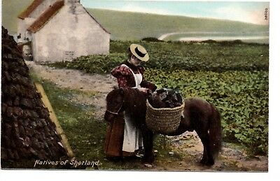 POSTCARD, Natives of Shetland 3802/2, Lady, Donkey. Cottage, Unposted 1900s