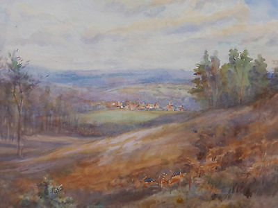 Victorian Watercolour On Whitley Common Artist K Leney Free Shipping To England