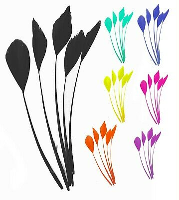 Long Fascinators Feathers Stripped Coque Millinery Hats Trimmings Coloured