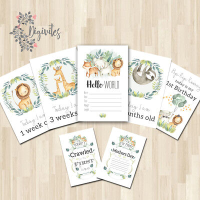 Baby, Milestone Cards, Safari Jungle Animals Milestone Cards and moments 36 set
