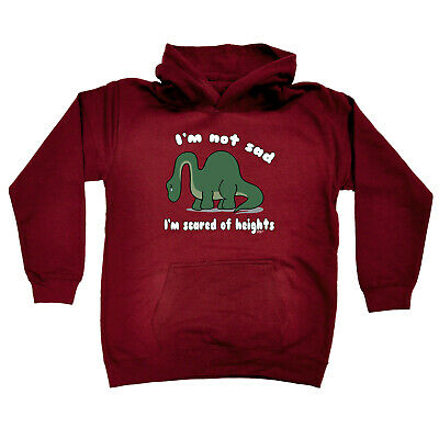 Funny Kids Childrens Hoodie Hoody - Im Not Sad Im Scared Of Heights Dinosaur