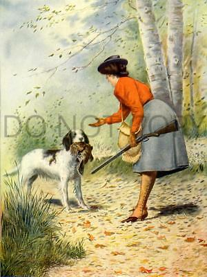 Antique Woman Ruffed Grouse Hunting English Setter Repro 8X10 Photo Print