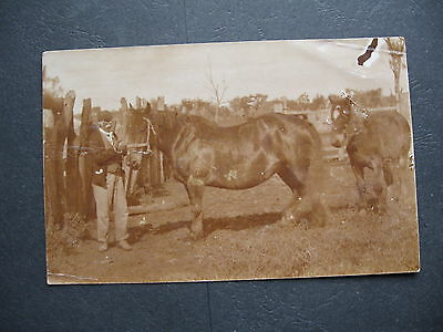 A Relative Of Crook Lyons MAYBE A Pridmore 1880ish ,Moama Echuca NSW Australia