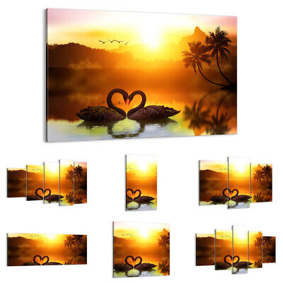 CANVAS PICTURE Print Wall Art swan water couple 3855 UK