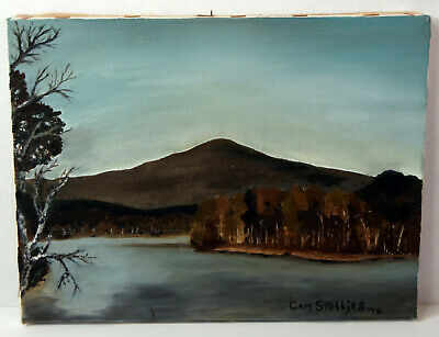 "12"" Oil Painting Signed Cam Stelljes Autumn Fall Landscape Mountains Lake Trees"