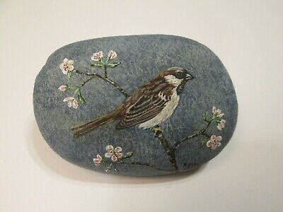 House English Sparrow hand painted on a rock by Ann Kelly