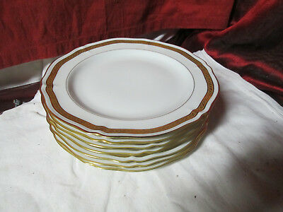 Lot de 7 Assiettes plates en Porcelaine LIMOGES (incrustation)