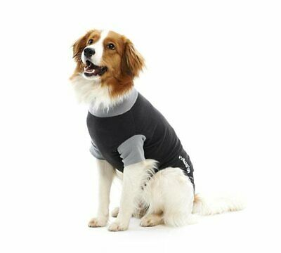 BUSTER Body Suit for Dogs & Cats | Dogs, Cats