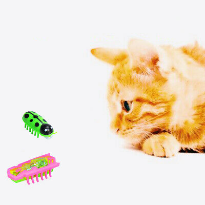 Cartoon Practical Jokes Robotic Insect Cat Playing Electronic Pet Toys Smart