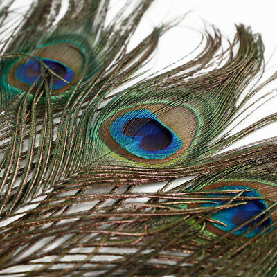 """10/30 Pcs 10-12"""" Natural Peacock Feathers Stage Costume Makeup Jewellery Making"""