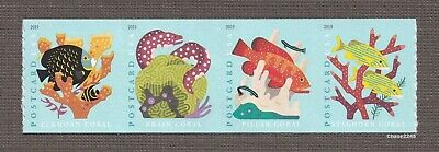 *NEW* 2019 Coral Reefs #5367-70 (Coil Strip of 4) 2019 Postcard Rate MNH