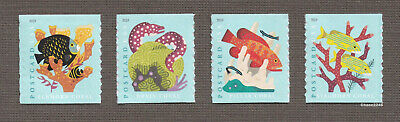 *NEW* 2019 Coral Reefs #5367-70 (Coil Sgls Set of 4) Postcard Rate Mint NH