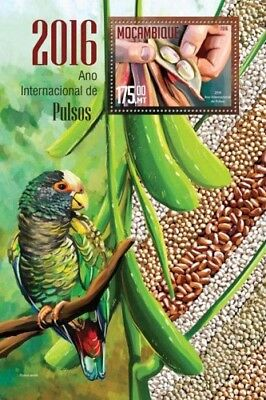 Mozambique 2016 Sheet Mnh Year Of Pulses Birds Oiseaux Pajaros Aves Parrots 3A
