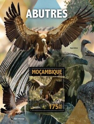 Mozambique 2016 Sheet Mnh Birds Of Prey Rapaces Oiseaux Vultures Avvoltoi 2A