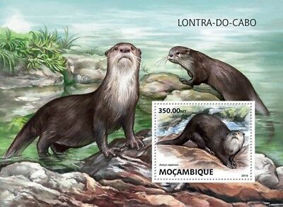 Mozambique 2016 Sheet Mnh Wwf Wildlife Otters African Clawless Otter Lontra 4A