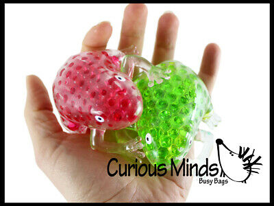 2 Cute Frog Water Bead Filled Squeeze Stress Balls -Squishy Toy - Sensory OT