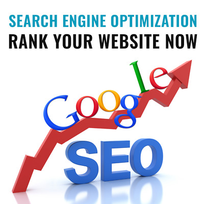 Search Engine Optimization SEO - Rank your website Now Increase your business