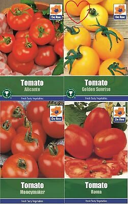 Vegetable Tomato Seeds Garden