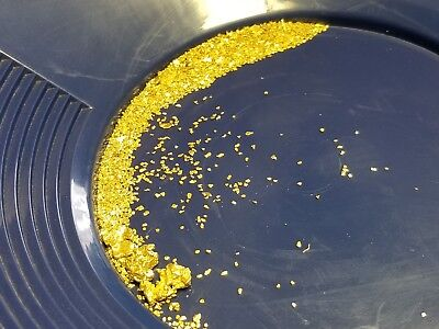Gold Pay dirt 1/2 lb 100% Unsearched and Guaranteed Added GOLD! Panning Nuggets
