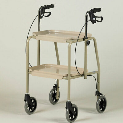 Days Trolley Walker With Brakes - 081449230