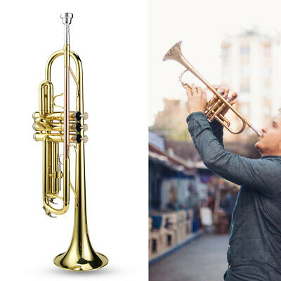 Quality Orchestral Brass Trumpet Surface Polishing Professional Level W/Care Kit