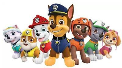 Paw Patrol Rocky Skye Rubble Marshall Chase Everest Rescue Snowmobile Tracker