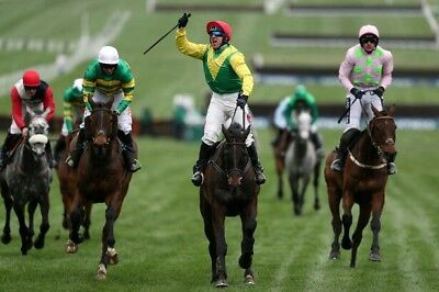 Horse Racing Betting System