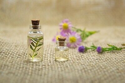 Essential Oils New Pure Aromatherapy 30 ML Natural Holy Land FREE SHIPPING