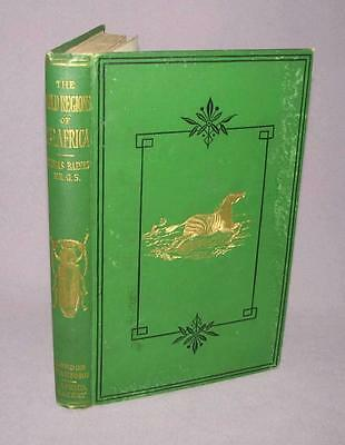 Thomas Baines, Esq., F.R.G.S. - The Gold Regions of South Eastern Africa