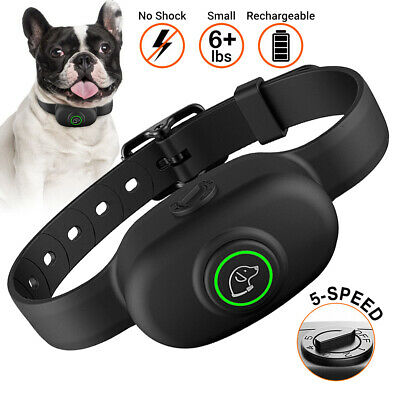 Pet Dog Training Collar Waterproof No Shock Anti Bark Rechargeable for Small Dog