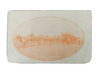 LC 48 (29) Commonwealth Of Australia Lettercard Camels Carting Far North 2d KGV