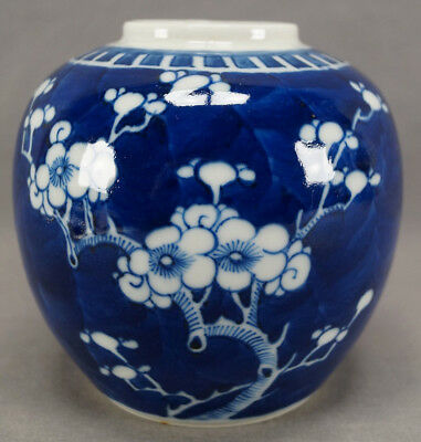 Late Qing 19th Century Chinese Export Blue & White Hawthorn Prunus Ginger Jar A