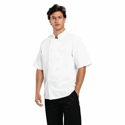 Whites Boston Chefs Jacket in White with Short Sleeves - No Pocket - XS