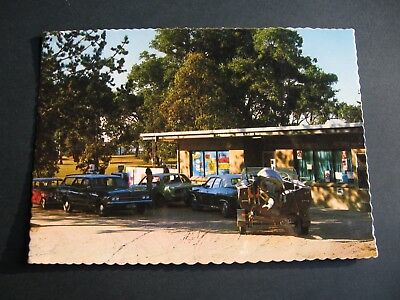 The Pines Store ,Hub Caravan Park , Pambula   Holden Ford